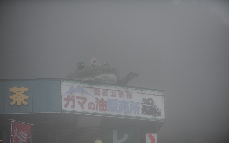 筑波山ドライブ 紅葉とガマとハイエースと霧