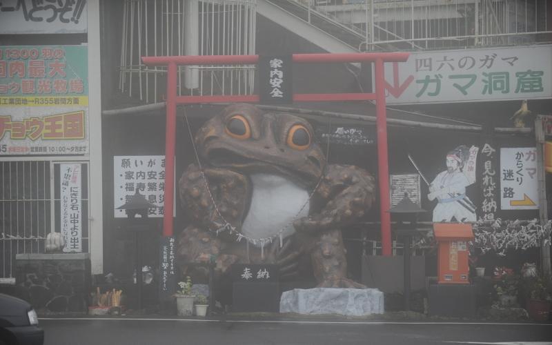 筑波山ドライブ 紅葉とハイエースとガマと霧